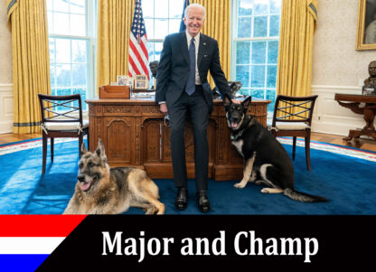 major and champ trading card